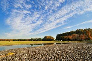 水元公園 中央広場とすじ雲の写真素材 [FYI01542037]