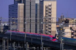 東北新幹線,スーパーこまちとつばさの写真素材 [FYI01542248]