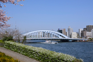 永代橋と観光船の写真素材 [FYI01542591]