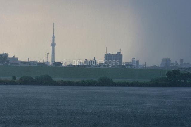 東京スカイツリーと豪雨の写真素材 [FYI01542981]