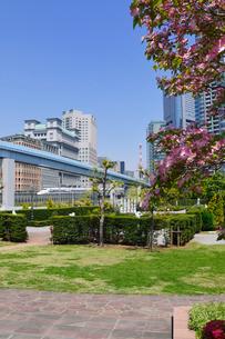 イタリア公園と東海道新幹線の写真素材 [FYI01543150]