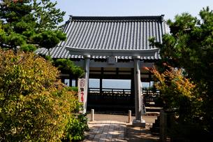 常宮神社境内の風景の写真素材 [FYI01544338]