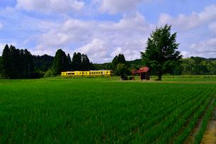 いすみ鉄道の写真素材 [FYI01544382]