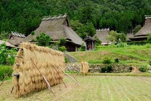 美山かやぶきの里収穫後の田園風景の写真素材 [FYI01544384]