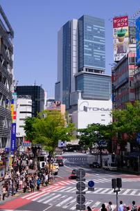 渋谷ヒカリエと周辺の写真素材 [FYI01544586]