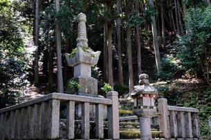 浅井三姉妹の次女お初が眠る常高院墓所の写真素材 [FYI01544685]