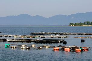 気比の松原海岸の風景の写真素材 [FYI01544727]
