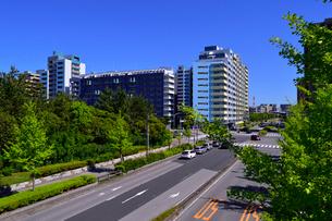 新緑と幕張ベイタウンの街並みの写真素材 [FYI01544903]