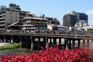 鴨川にかかる三条大橋の風景の写真素材 [FYI01544943]