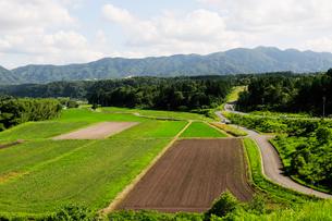 蒜山高原の田園風景の写真素材 [FYI01544989]