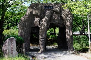 小浜公園の風景の写真素材 [FYI01545155]