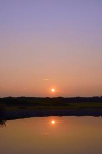水元公園中央広場の池と朝日の写真素材 [FYI01545430]