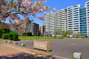 打瀬二丁目公園と幕張ベイタウンの写真素材 [FYI01545500]
