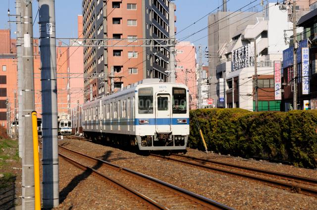 東武亀戸線の車両の写真素材 [FYI01545566]