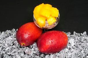果物・マンゴの写真素材 [FYI01545721]