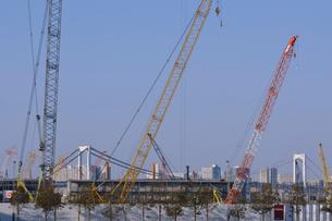 工事中の豊洲新市場の写真素材 [FYI01545731]
