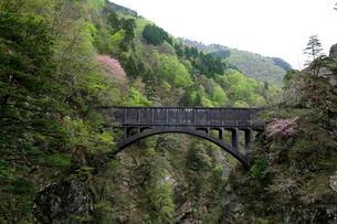 黒部渓谷トロッコ電車からサンナビキ山を望むの写真素材 [FYI01545760]