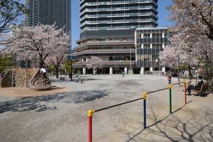月島第2児童公園と桜の写真素材 [FYI01545815]