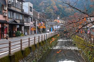 城崎温泉街の風景の写真素材 [FYI01545880]