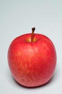 果物・ふじりんごの写真素材 [FYI01546250]