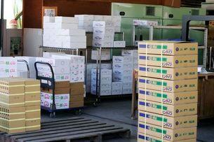 岡山産果物集荷作業所の写真素材 [FYI01546330]