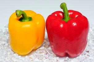 野菜・パプリカの写真素材 [FYI01546341]