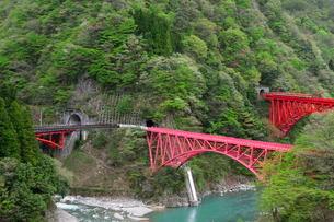 黒部渓谷トロッコ電車駅から新山彦橋の風景の写真素材 [FYI01546365]