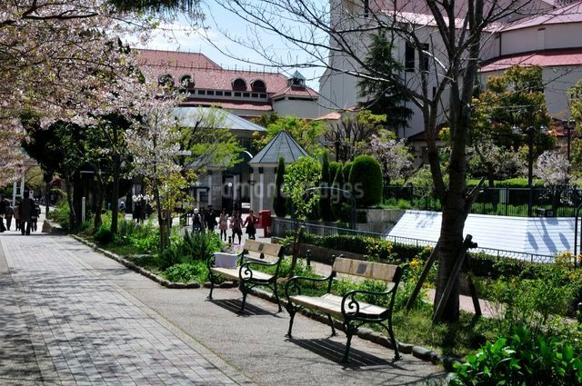 宝塚・宝塚歌劇桜並木通りの写真素材 [FYI01546486]