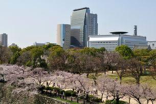 桜の大阪城公園から大阪歴史博物館等を見るの写真素材 [FYI01546618]