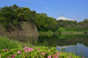 日本武道館と新緑の写真素材 [FYI01546741]