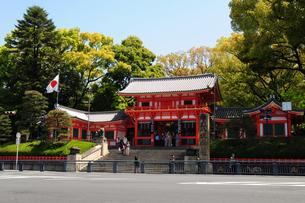 京都八坂神社西桜門の風景の写真素材 [FYI01546747]