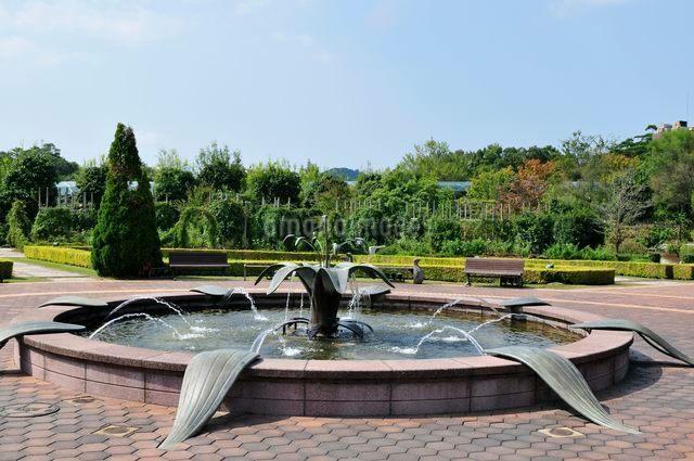 とっとり花回廊 花の谷噴水の写真素材 [FYI01546789]
