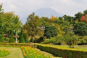 とっとり花回廊 園内ヨーロピアンガーデンから大山の写真素材 [FYI01546842]