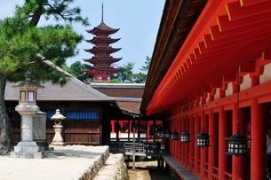 世界遺産・日本三景 夏の宮島厳島神社から五重塔の写真素材 [FYI01547010]