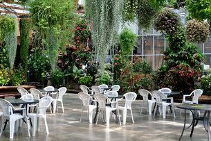 ベゴニアと観葉植物の憩いの広場の写真素材 [FYI01547076]