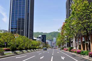 神戸 フラワロードから三宮の街並みの写真素材 [FYI01547311]