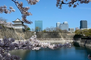 桜咲く大阪城公園からビジネスパークを見るの写真素材 [FYI01547569]