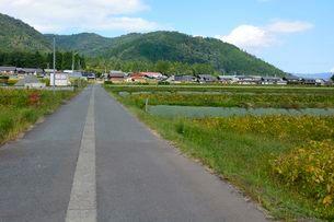 箱館山 山麓の田園風景の写真素材 [FYI01547582]