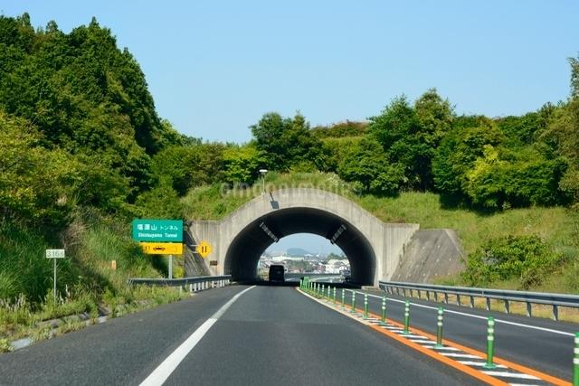 高速道路 山陰自動車道塩津山トンネル付近の写真素材 [FYI01547628]
