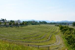 新緑,蒜山高原の写真素材 [FYI01547683]