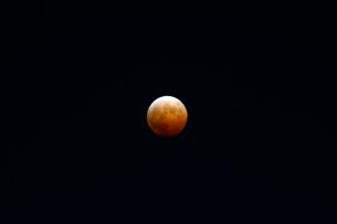 皆既月食の写真素材 [FYI01547849]