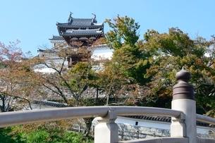 昇龍橋から福知山城見るの写真素材 [FYI01548001]