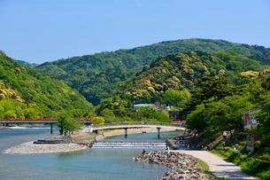 新緑 宇治橋から宇治川の上流を見るの写真素材 [FYI01548035]