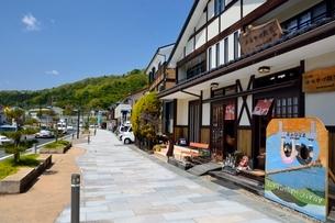 宮津 笠松公園入口の土産店の写真素材 [FYI01548287]