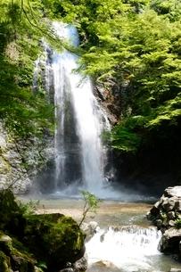 新緑の箕面大滝の写真素材 [FYI01548437]