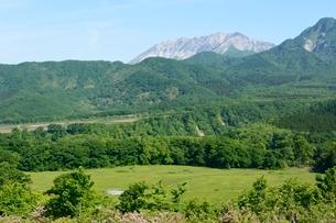 新緑,蒜山高原から大山を見るの写真素材 [FYI01548528]