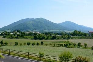 新緑,蒜山高原から三座を見るの写真素材 [FYI01548793]