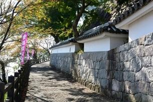 福知山城天守閣に行く石畳の写真素材 [FYI01548795]