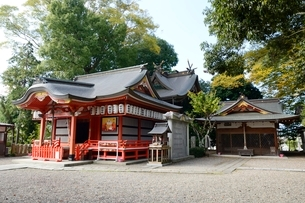 福知山,御霊神社本殿の写真素材 [FYI01548855]