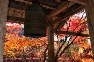 高山寺の鐘の写真素材 [FYI01549071]